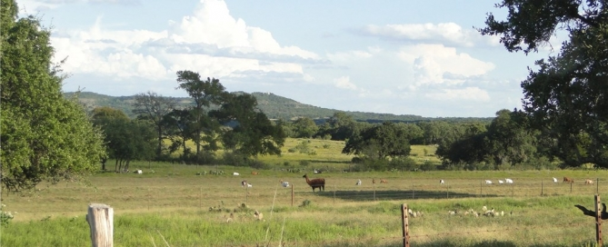 Texas Ranch for Sale in the Hill Country