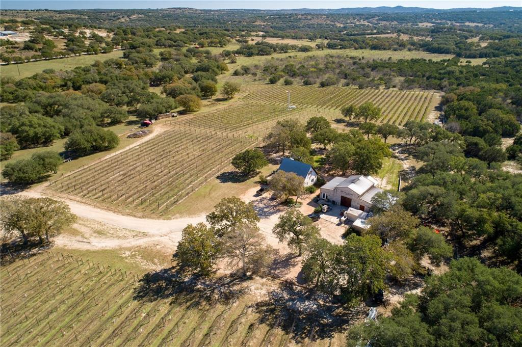 Texas Winery for Near near Austin